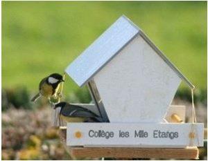 IDD EDD Mangeoire à oiseaux